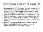 international divisions of labour bi