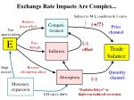 exchange rate impacts are complex