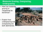 moderate grazing overgrazing undergrazing