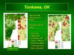 tonkawa ok