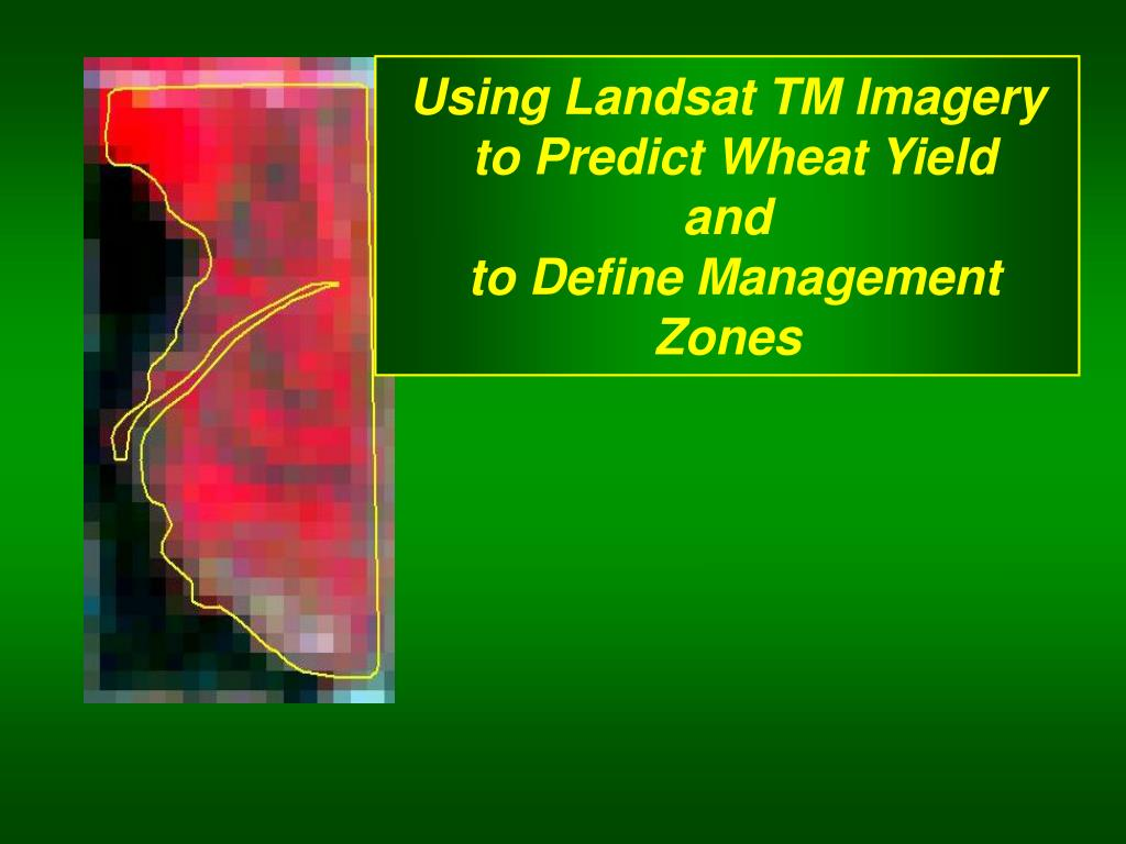 using landsat tm imagery to predict wheat yield and to define management zones l.
