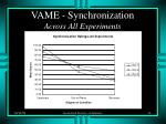 vame synchronization across all experiments