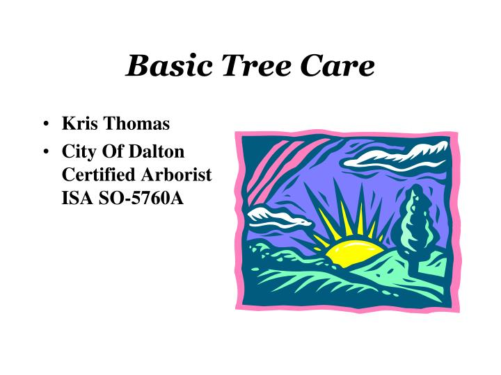 basic tree care n.