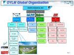 oylm global organization