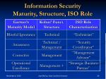 information security maturity structure iso role