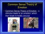 common sense theory of emotion