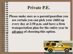 private p e53