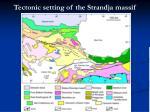tectonic setting of the strandja massif