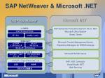 sap netweaver microsoft net