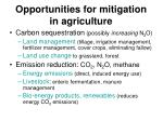 opportunities for mitigation in agriculture