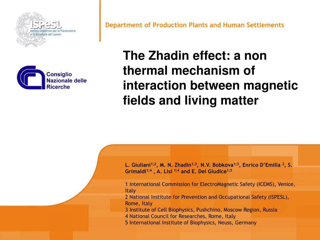 the zhadin effect a non thermal mechanism of interaction between magnetic fields and living matter l.