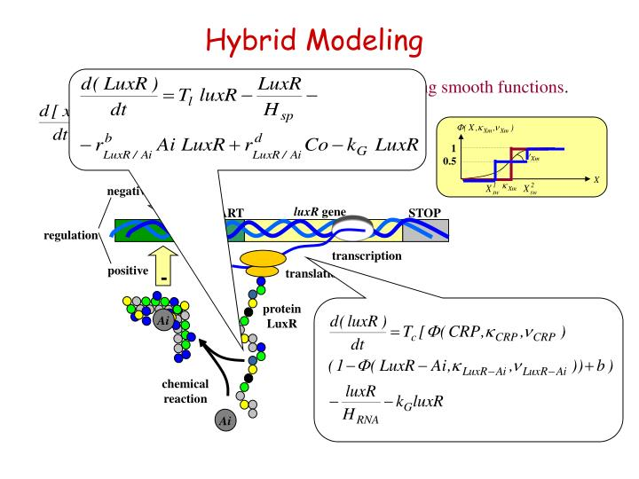 modeling and analysis of the toyota hybrid system essay Toyota hybrid system is the innovative powertrain used in the current best-selling hybrid vehicle on the market—the prius it uses a split-type hybrid configuration which contains both a parallel and a serial power path to achieve the benefits of both.