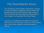 the grand banks fishery19