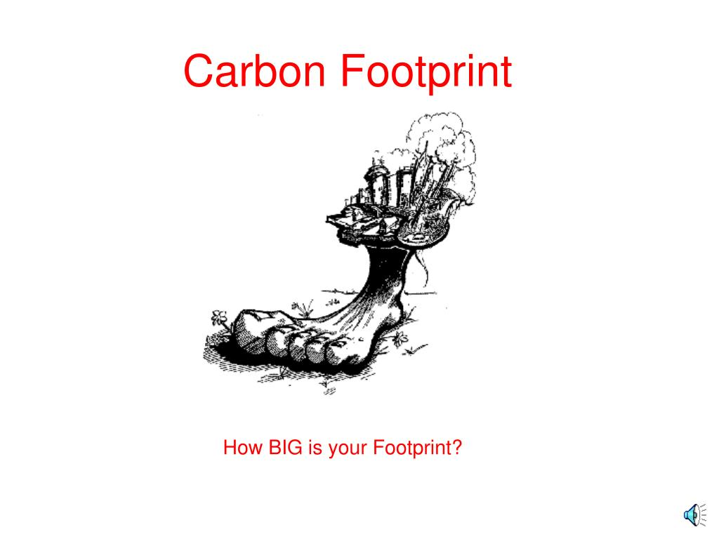 carbon footprint l.