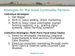 strategies for mid sized commodity farmers