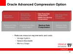 oracle advanced compression option10