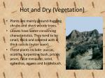 hot and dry vegetation