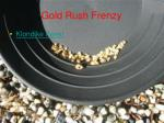 gold rush frenzy