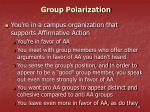 group polarization32