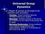 universal group dynamics
