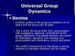 universal group dynamics12