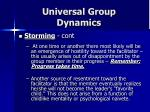 universal group dynamics15