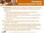homeless unaccompanied youth