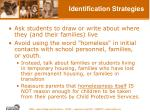 identification strategies38
