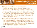 unaccompanied youth strategies
