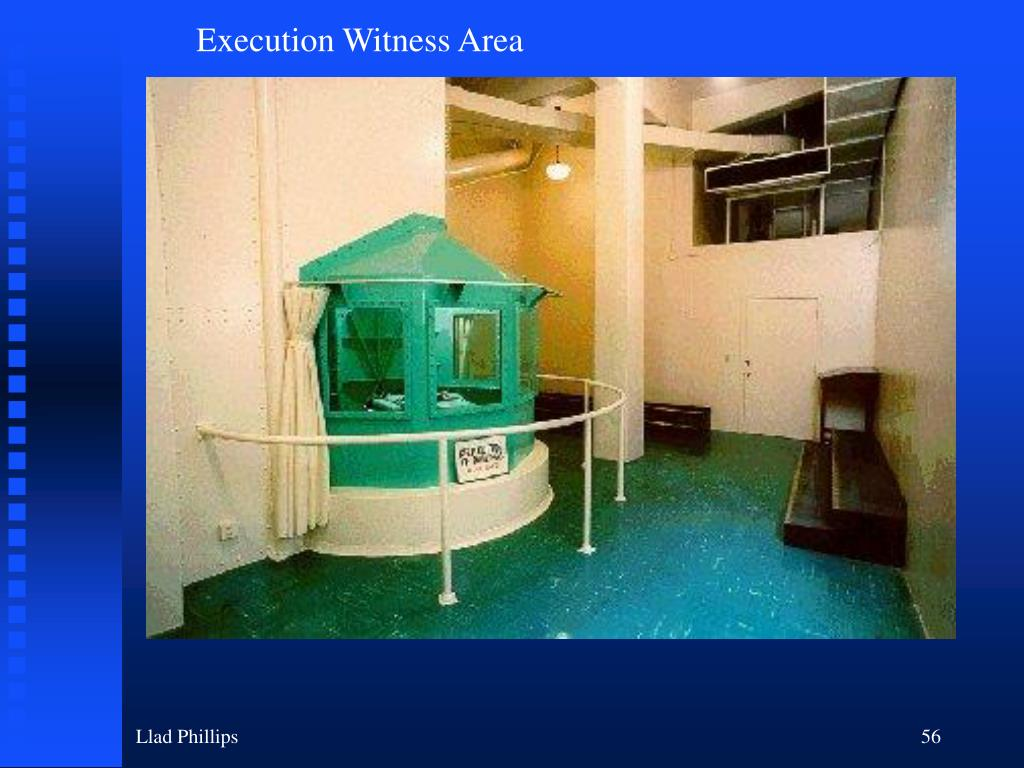 Execution Witness Area