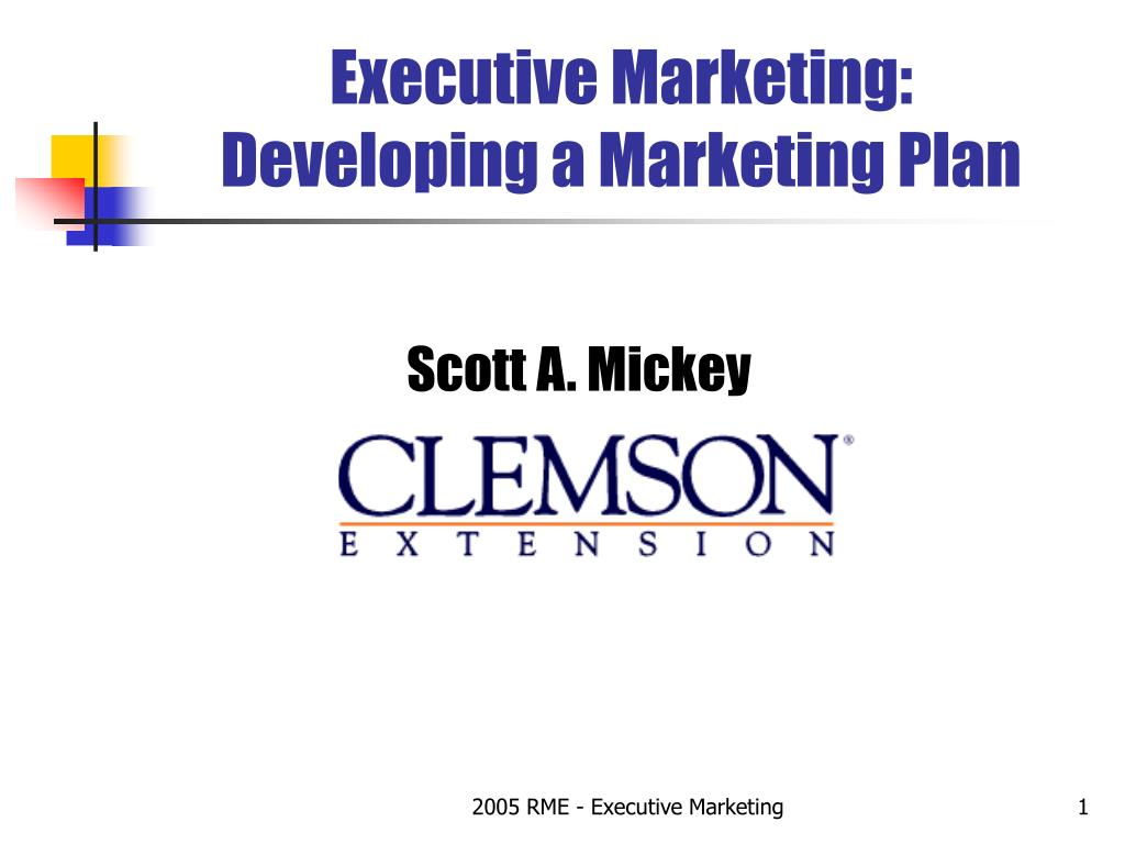executive marketing developing a marketing plan l.