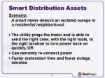 smart distribution assets