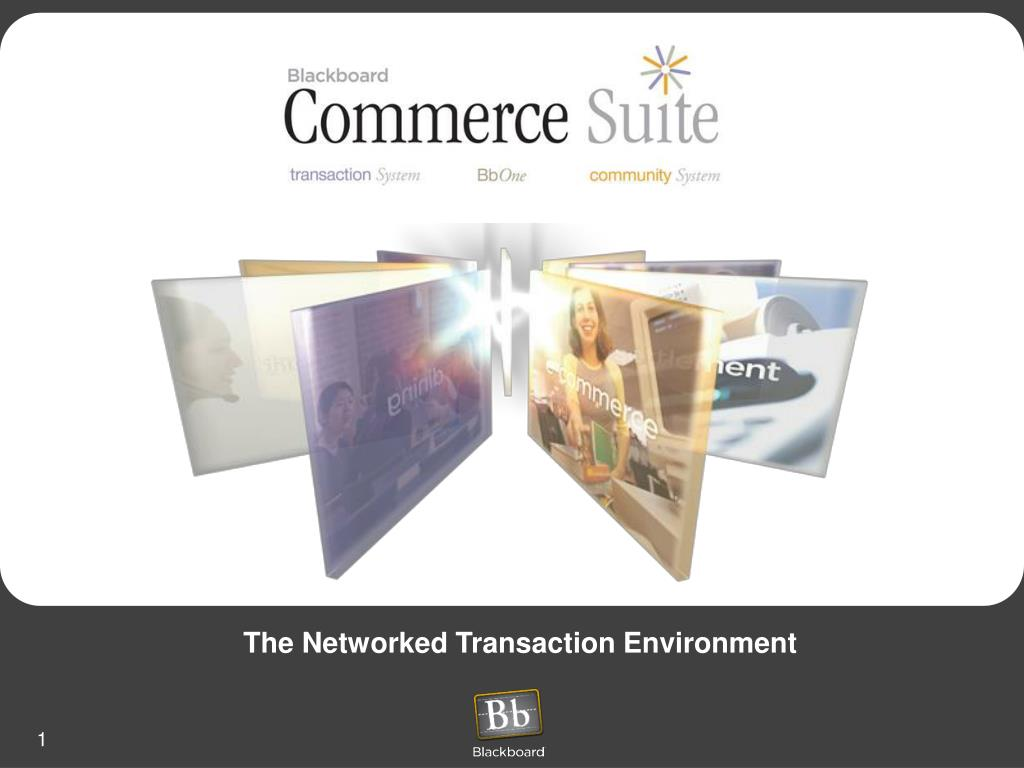 the networked transaction environment l.