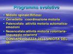 programma evolutivo