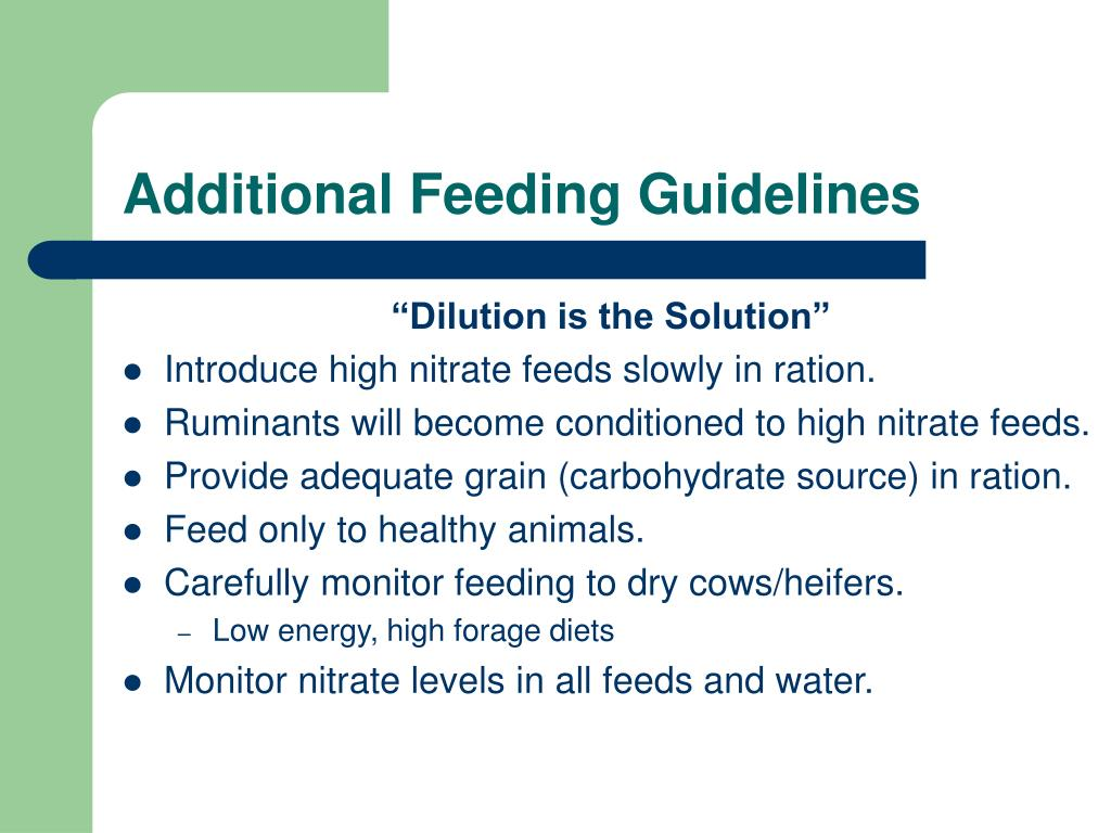 Additional Feeding Guidelines