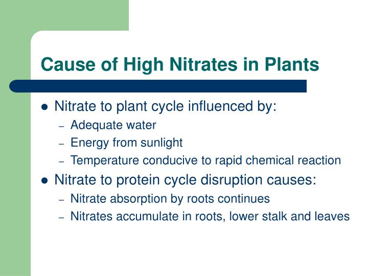 Cause of high nitrates in plants