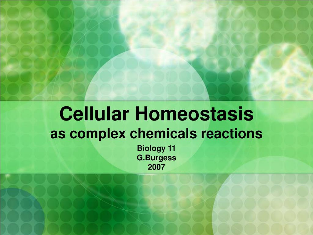 cellular homeostasis as complex chemicals reactions l.