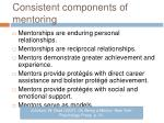 consistent components of mentoring