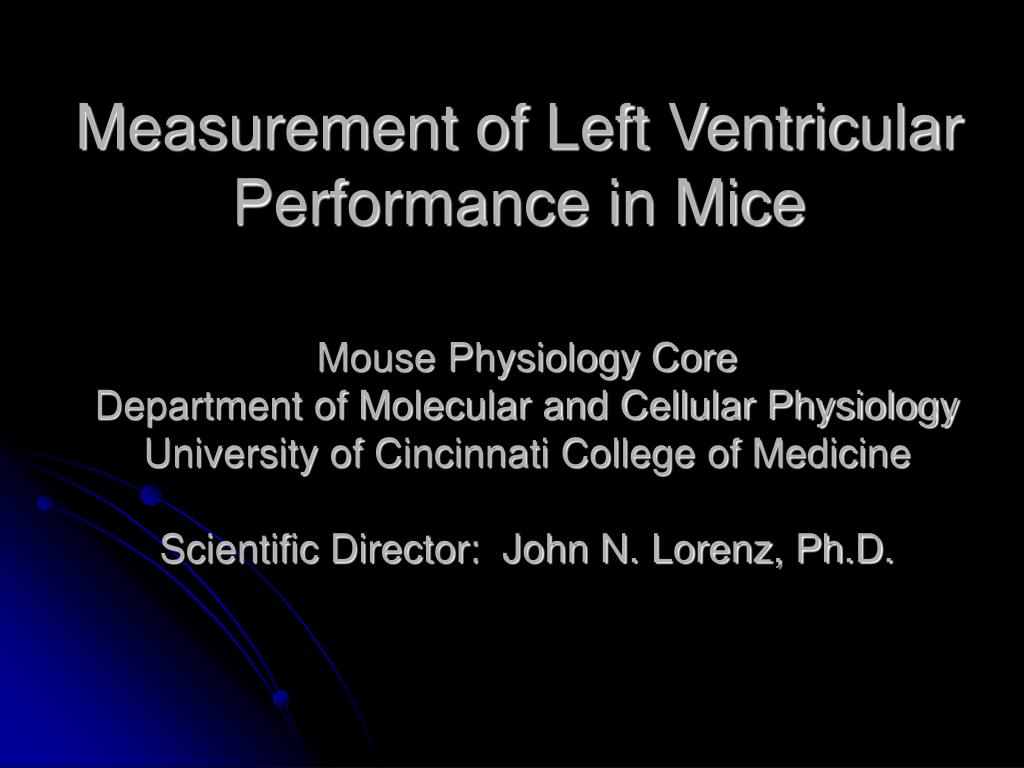 measurement of left ventricular performance in mice l.
