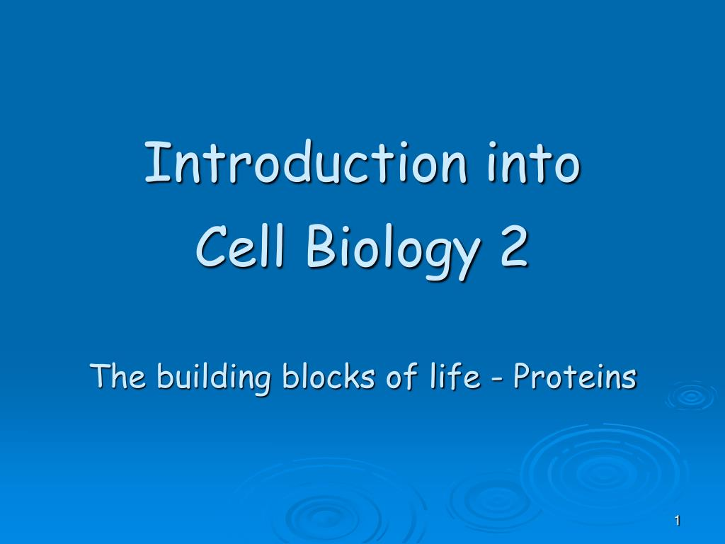 introduction into cell biology 2 the building blocks of life proteins l.