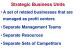 strategic business units