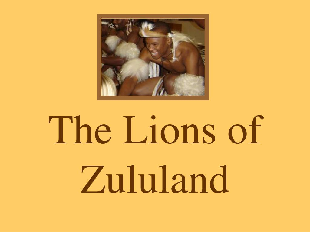 the lions of zululand l.