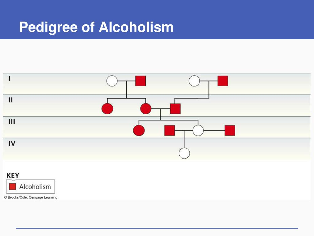 Pedigree of Alcoholism
