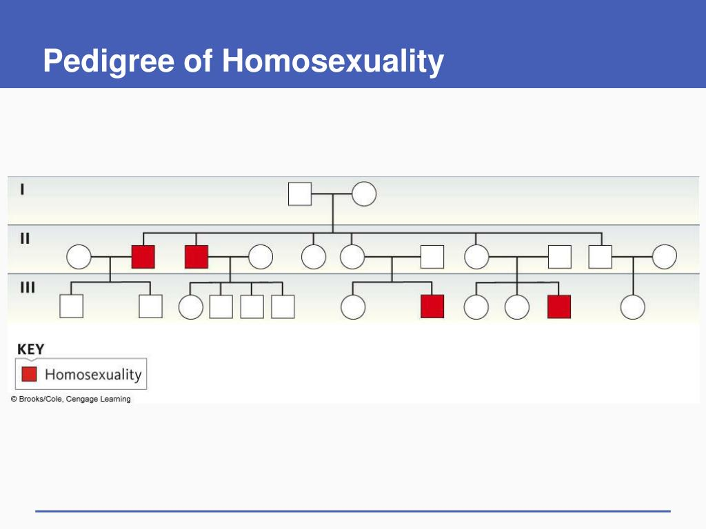 Pedigree of Homosexuality