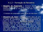 9 1 3 forma o de nevoeiros11