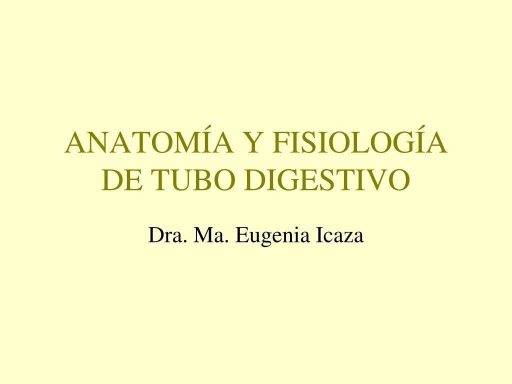 anatom a y fisiolog a de tubo digestivo l.