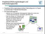 projektdurchf hrungsstrategien und entscheidungspunkte14