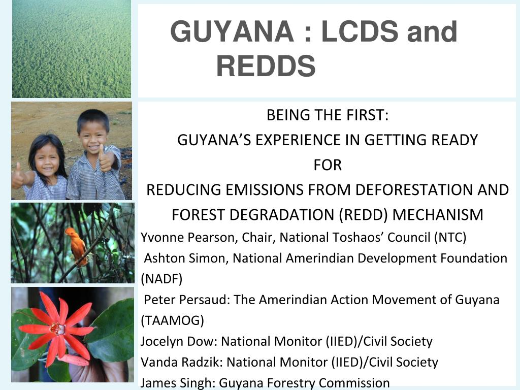 guyana lcds and redds l.