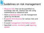 guidelines on risk management