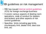 rbi guidelines on risk management
